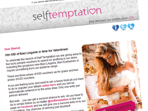 SelfTemptation Lingerie Email Marketing Campaign